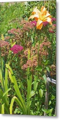 Garden Flowers  Metal Print by Thelma Harcum