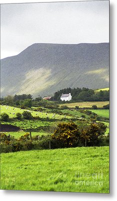 Irish Farm - Dingle Peninsula  Metal Print by Gordon Wood