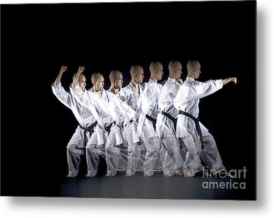 Karate Expert Metal Print by Ted Kinsman
