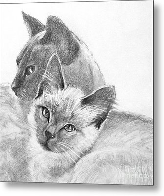 Mother And Child Metal Print by Susan A Becker