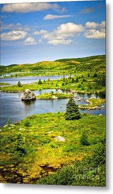 Newfoundland Landscape Metal Print by Elena Elisseeva