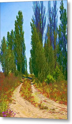 Paradise Road Metal Print by Randall Nyhof