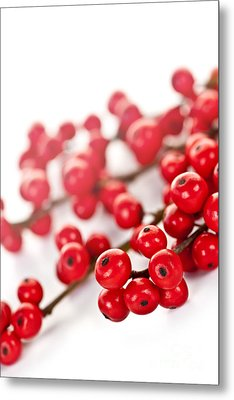 Red Christmas Berries Metal Print by Elena Elisseeva