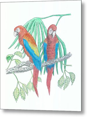 Scarlet Macaw Metal Print by Richard Freshour