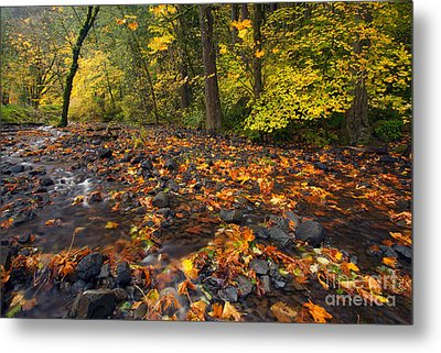 Scattered About Metal Print by Mike  Dawson