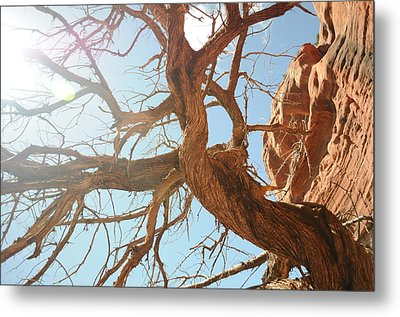 Sedona 013 Metal Print by Earl Bowser
