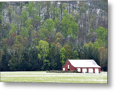 Spring Snow  Metal Print by Thomas R Fletcher