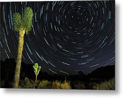 Star Trails In Joshua Tree Metal Print by Dung Ma