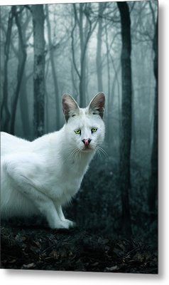 Tonga Metal Print by Big Cat Rescue