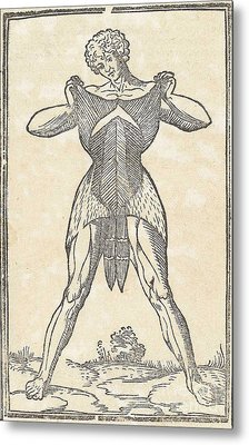 Historical Anatomical Illustration Metal Print by Science Source