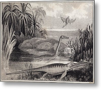 1837 Extinct Prehistoric Animals Dorset Metal Print by Paul D Stewart