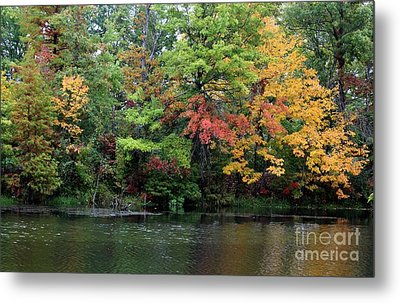 Sugar Ridge State Fish And Wildlife Area Metal Print by Jack R Brock