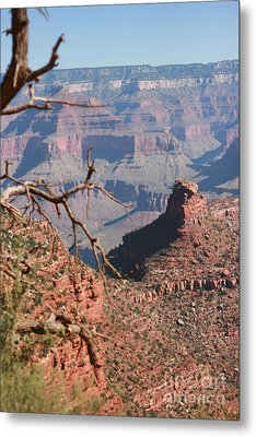 Grand Canyon National Park Usa Arizona Metal Print by Audrey Campion