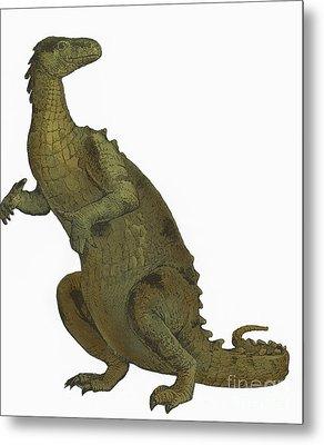 Iguanodon, Mesozoic Dinosaur Metal Print by Science Source