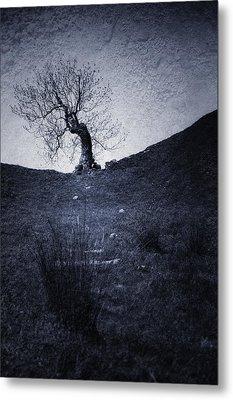 Tree Metal Print by Svetlana Sewell