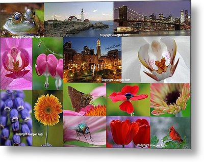 2012 Photography Artwork Highlights Metal Print by Juergen Roth