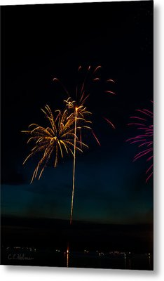 20120706-dsc06451 Metal Print by Christopher Holmes