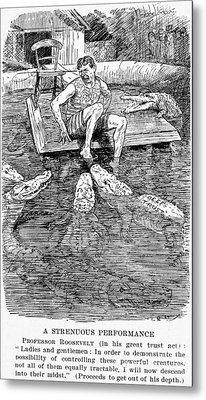 Roosevelt Cartoon, 1906 Metal Print by Granger