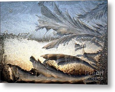 Frost On A Windowpane Metal Print by Thomas R Fletcher