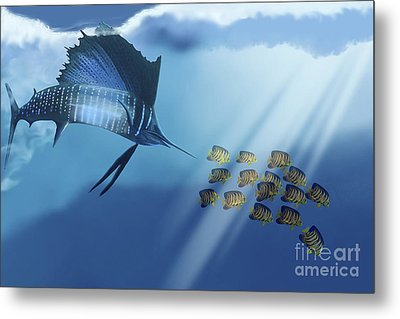 A Blue Marlin Swims After A School Metal Print by Corey Ford