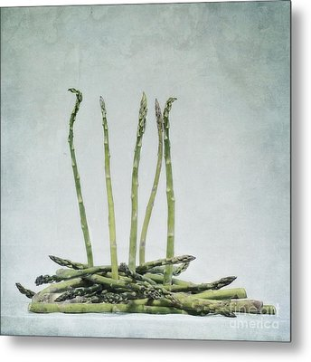 A Bunch Of Asparagus Metal Print by Priska Wettstein