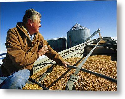 A Farmer Watches As His Corn Is Augered Metal Print by Joel Sartore