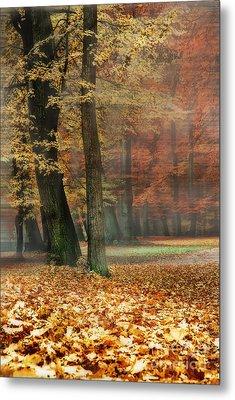 A Foggy Autumn Day Metal Print by Hannes Cmarits