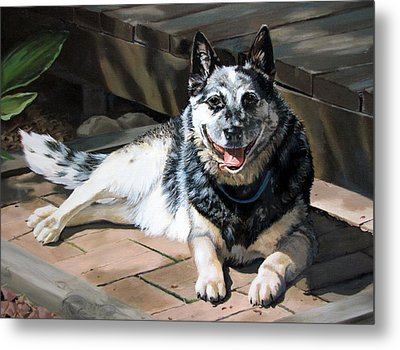 A Man's Best Friend Metal Print by Sandra Chase