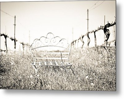 A Moment To Ponder Metal Print by Aileen Savage