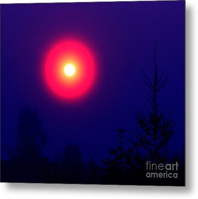 A New World Metal Print by Rory Sagner