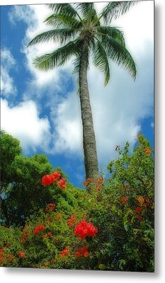 A Touch Of The Tropics Metal Print by Lynn Bauer