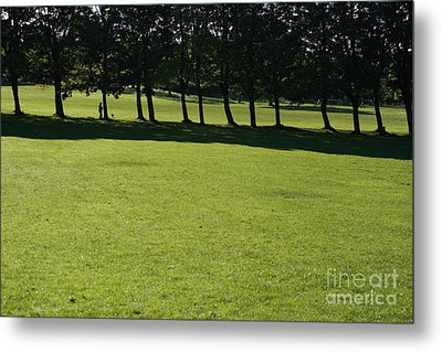 A Walk In The Park.. Metal Print by Andy  Mercer