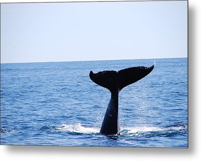 A Whale Of A Wave Metal Print by Lee Yeomans