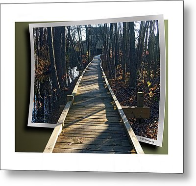 Abbotts Nature Trail Metal Print by Brian Wallace