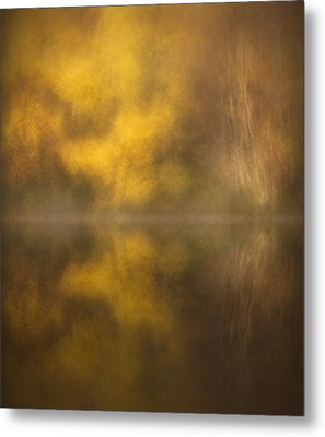 Abstract Birch Reflections Metal Print by Andy Astbury