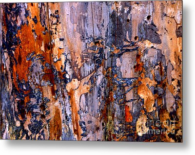 Abstract By Nature Metal Print by Anca Jugarean