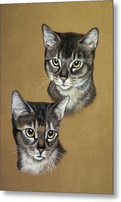 Abyssinian Cats Metal Print by Patricia Ivy