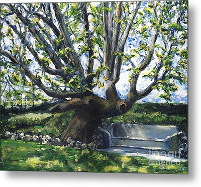 Adamson Home Tree Metal Print by Randy Sprout