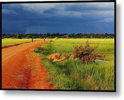 African Landscape Metal Print by Marian Barbu