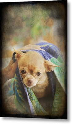After The Bath Metal Print by Laurie Search
