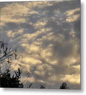 After The Storm Metal Print by Sandy Poore