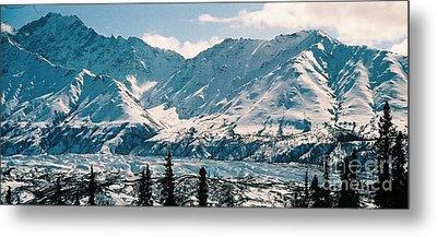 Alaska Deep Freeze Metal Print by Judyann Matthews