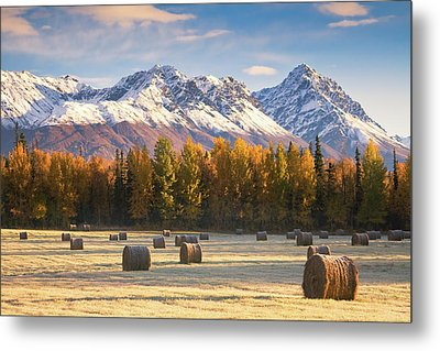 Alaska Farming Metal Print by Alaska Photography