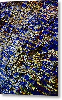 All That Glitters Metal Print by Kerri Ligatich
