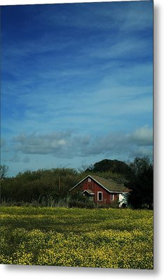 All That Yellow Metal Print by Laurie Search