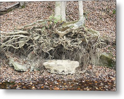 Altar To Nature Metal Print by James Collier