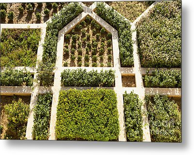 Amber Fort Garden Metal Print by Inti St. Clair