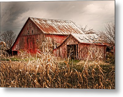 America's Small Farm Metal Print by Randall Branham