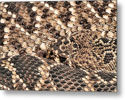 An Abstract Danger Metal Print by JC Findley