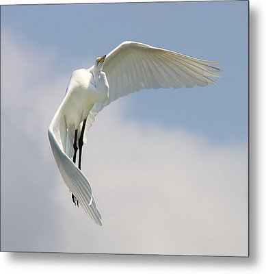Angelic Metal Print by Paulette Thomas